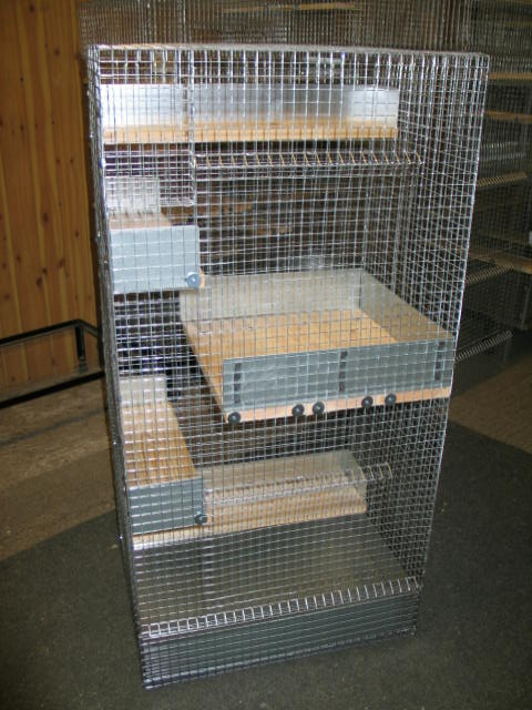 how to build a degu cage